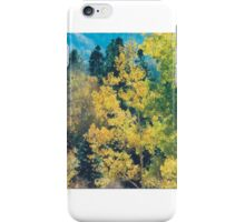 Autumn View, Cumbres Toltec Narrow Gauge Railroad, New Mexico iPhone Case/Skin