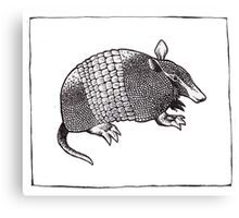 Graphic Armadillo Canvas Print