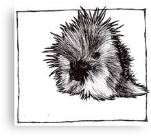Graphic Porcupine Canvas Print