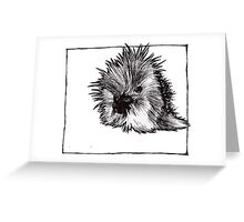 Graphic Porcupine Greeting Card