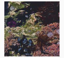 Tidal Pool One Piece - Long Sleeve