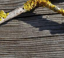 Lichen on a Stick Sticker