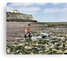 Rock pools Canvas Print