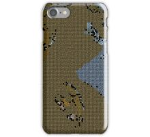 16 00443 0 stained glass iPhone Case/Skin