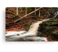 Down by the falls Canvas Print