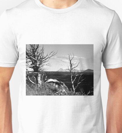 Bristle Cone Pines in Black & White Unisex T-Shirt
