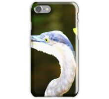 Florida Bird iPhone Case/Skin