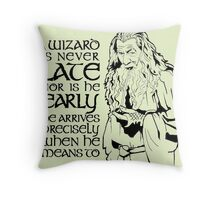 Gandalf Wizard Quote Throw Pillow
