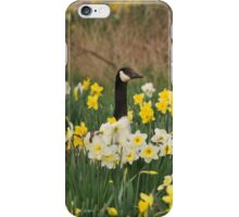 A Goose in the Garden II iPhone Case/Skin