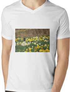 A Goose in the Garden II Mens V-Neck T-Shirt