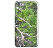 Spiky Bush in St. Croix iPhone Case/Skin