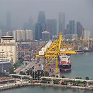 Port of Singapore by Werner Padarin