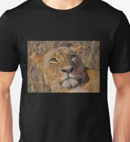 portrait female lion (lioness) Kenya Unisex T-Shirt