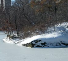 NY February Central Park, Snow View Sticker