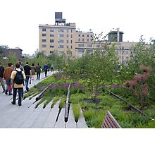 High Line View, New York's Elevated Garden and Walking Path Photographic Print