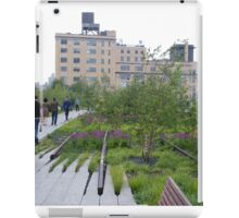 High Line View, New York's Elevated Garden and Walking Path iPad Case/Skin