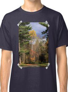 Sunlit Trees After The Rain Shower Classic T-Shirt