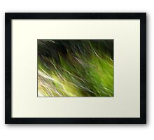 Watching the Wind Blow #2 Framed Print