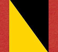 AnCap Flag Tri-blend T-Shirt