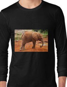 Baby Elephant After a Dust Bath Long Sleeve T-Shirt