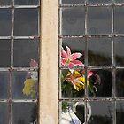 Vase & flowers, Dyrham Park by buttonpresser