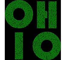 Ohio (OH) Weed Leaf Pattern Photographic Print
