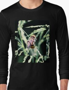 Restful Bee Long Sleeve T-Shirt