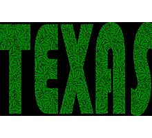 Texas Weed Leaf Pattern Photographic Print