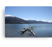 Boundary Creek - New Zealand Canvas Print