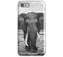 Tusker iPhone Case/Skin