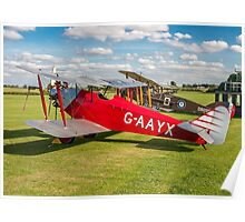 Southern Martlet G-AAYX Poster