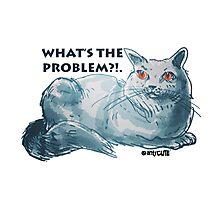 cartoon style illustrtion cool cat  Photographic Print