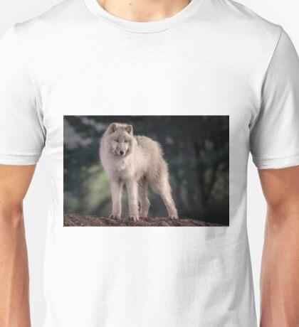 Arctic wolf standing looking alert Unisex T-Shirt