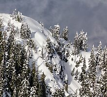 Grouse Mountain 1 by Charles Kosina