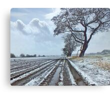 Light Snow covering Winter Farmland Metal Print