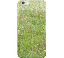 Summer Meadow Closeup iPhone Case/Skin