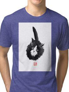 ball of fur Tri-blend T-Shirt