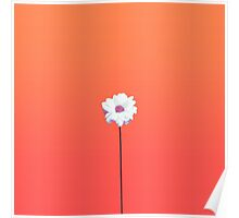 Summery Sunset Orange Gradient and White Daisy Poster