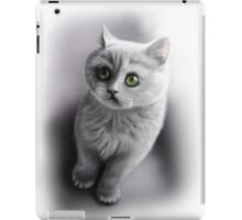 british shorthair kitten /Agat/ iPad Case/Skin