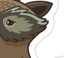 Funny little raccoon love you Sticker