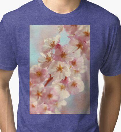 Pep Talk Tri-blend T-Shirt