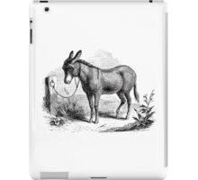 Vintage Domestic Donkey Illustration Retro 1800s Black and White Donkeys Image iPad Case/Skin