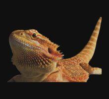 Bearded dragon by clayton  jordan