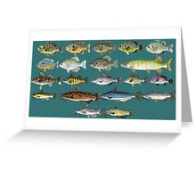 Freshwater Fish Group Greeting Card