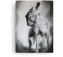 Charcoal Hare Canvas Print