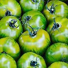 Green Tomatoes by Ludwig Wagner