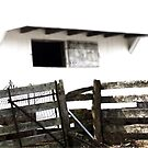 Fence on Country White  by ArtbyDigman