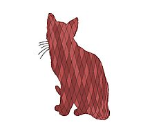 Red Cat Photographic Print