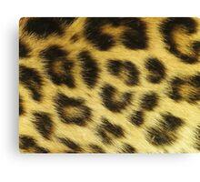 Leopard fur  Canvas Print