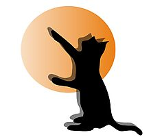 CAT SILHOUTTE Photographic Print
